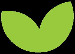 ayb_leaf